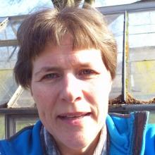 Lise Lyngsie Jacobsen - Herlev Kommunes billede